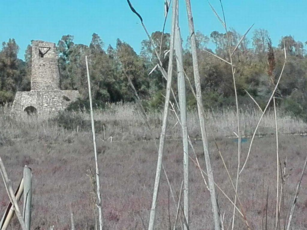 southsardinia-com-181